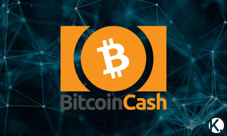 Blockchain Dev Series - Bitcoin Cash